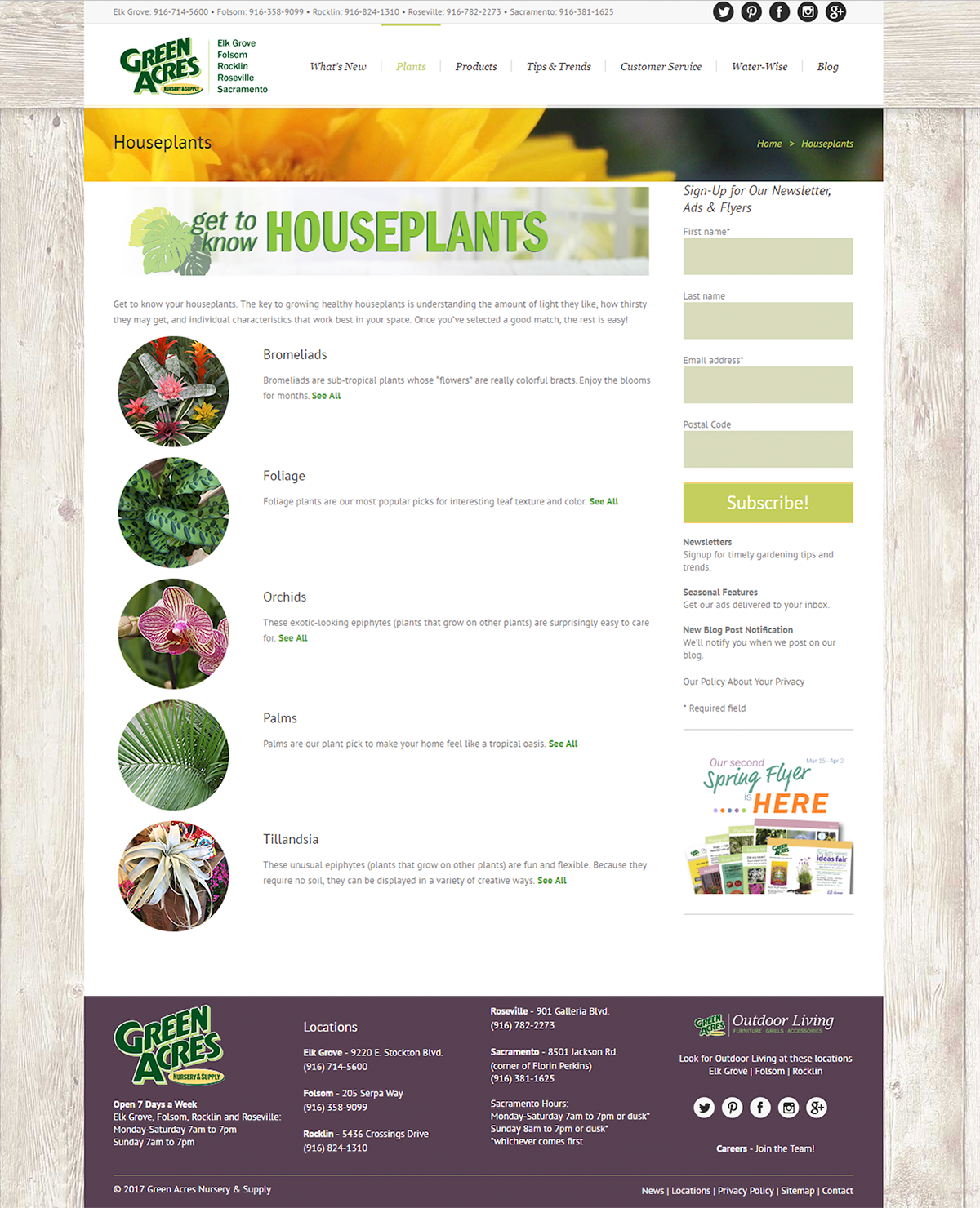 iDigGreenAcres - Houseplants