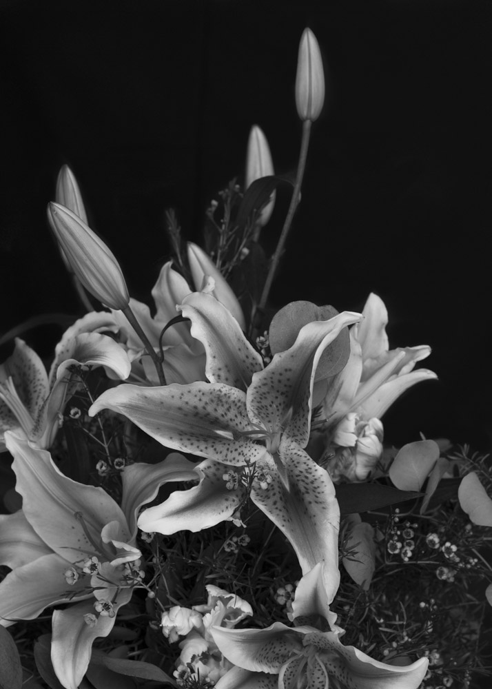 Flower Bouquet B&W